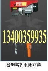 微型电动葫芦 500W 220V6米/12米