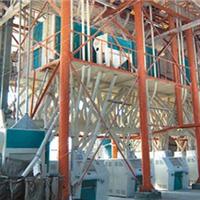 80吨钢架结构小麦磨粉机 小麦磨粉机价格