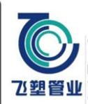 上海飞塑科技有限公司