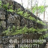 河北技术最权威包塑石笼网厂