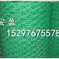 供应六角网厂家六角网供应商六角网出口