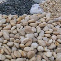 长期大量供应各种规格天然鹅卵石(泰翔)