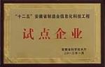 """""""十二五""""安徽省制造业信息化科技工程试点"""