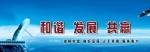 深圳市德迈盛仪器股份有限公司