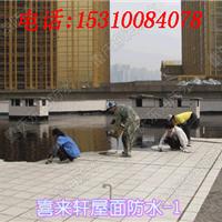 北京东海防腐防水工程技术有限责任公司重庆分公司