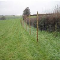 内蒙古草原网、内蒙古圈牲畜用草原围栏网