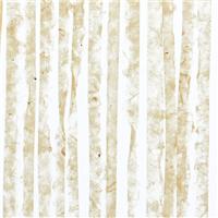3form透光树脂板,生态树脂板, 有机夹层