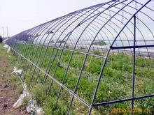 供应温室花卉大棚蔬菜大棚
