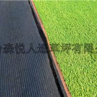 供应景观装饰用2.5CM高16800簇绿化人造草坪地毯