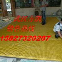 供应娄底排水沟篦子,邵阳排水沟模塑格子板
