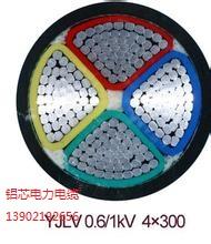 YJLV铝芯聚氯乙烯绝缘电力电缆,津猫牌电线电缆