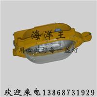 直销NTC9210-J400防震型投光灯
