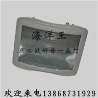 直销NTC9200-J1000投光灯