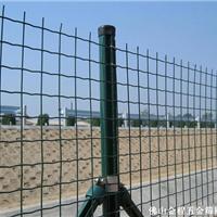 供应pvc电焊网、浸塑铁丝网、养殖围网