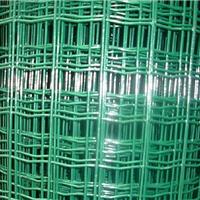 供应现货1.2米高养殖荷兰网、包塑围网