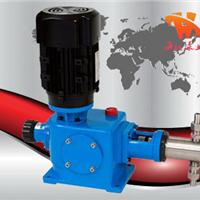 供应2DZ-X系列柱塞式计量泵