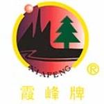 武汉市霞峰消防科技有限公司