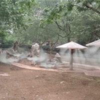 供应休闲场所人造雾机温泉山庄人工造雾机厂家直销喷雾系统