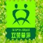 新野双荣草坪有限公司