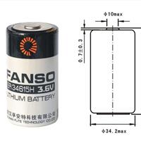孚安特ER34615H高能量D型3.6v锂亚电池