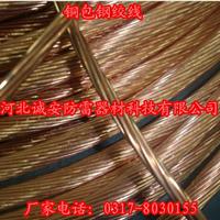 供应铜镀钢绞线
