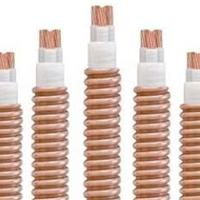 供应 YTTW 无机绝缘电缆 柔性防火电缆