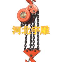 环链电动葫芦厂家价格型号群吊专用电动葫芦