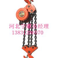供应DHP环链电葫芦_同步环链电动葫芦