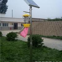 供应果园太阳能杀虫灯