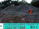 安平县力盾路桥边坡防护工程有限公司
