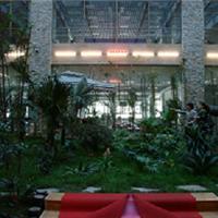 供应水果补光灯北京哪里有植物生长灯厂家