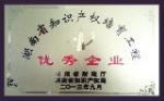 湖南省知识产权培育工程