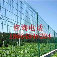 娄底养鸡专用围栏网/阳江工地铁丝隔离栅