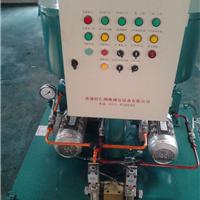 双列式电动润滑泵