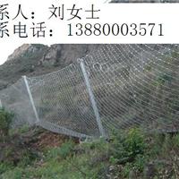 供应贵州四川新疆被动网厂家