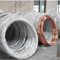 供应|镀铜圆钢|青海厂家,铜包钢圆钢0.254