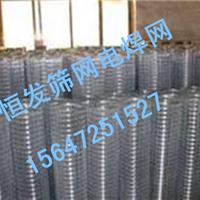 供应电焊网抹墙专用电焊网养殖电焊网批发