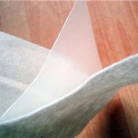 厂家直销 优质 二布一膜土工布
