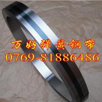 供应进口抗氧化60CrMo3-2弹簧钢