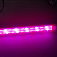 供应北京灵芝补光灯菌类LED生长灯价格