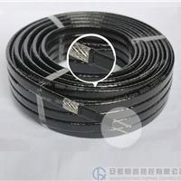 供应DWL-15-220-PF管道防腐自限温电伴热带