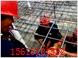 合肥桥梁加固钢筋网片-大型高等建筑网片厂家