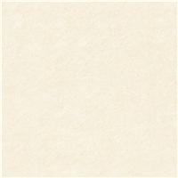 抛光砖――南岛风情 - XB series