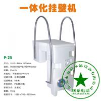 一体化挂壁机泳池水处理设备intpool 壁挂式
