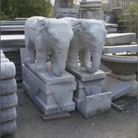供应湖南长沙石象