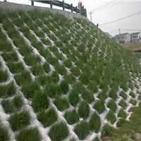 厂家批发摸袋机织布土工管带长丝机织布