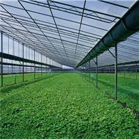 温室PC阳光板 温室大棚塑料板材