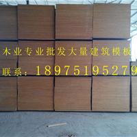 供应湖南松胶板|湖南松胶板价格