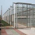 寿光盛荣温室工程有限公司