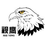 深圳市视鹰安防科技有限公司